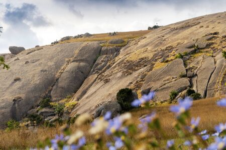 Huge monolith rock called Sibebe with blue flowers as the foreground, Eswatini