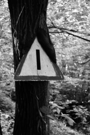 Triangular traffic sign, which over the years has grown together with a tree, the stake no longer exists.