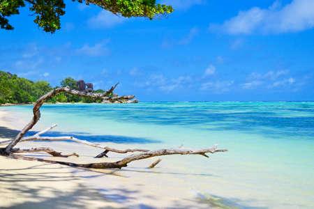 seychelles dream beach Zdjęcie Seryjne