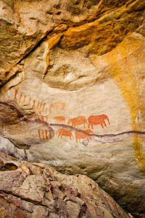 San Bushmen rock art at Stadsaal Cave in the Cederberg