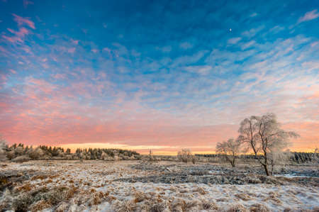 High Fens Winter Landscape