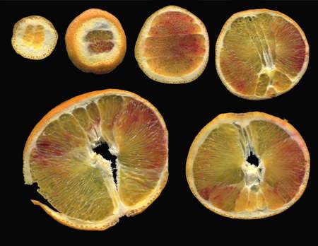 citrus aurantium: thin slices of orange on a black background arranged according to Functional the diameter