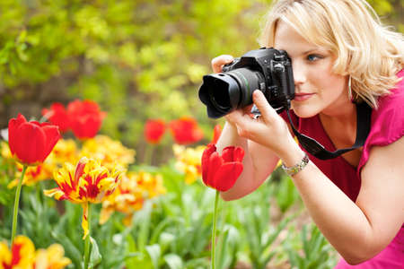 slr camera: Woman photographing tulips Stock Photo