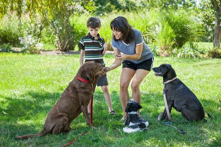 개에게 간식을주는 여자와 아이 스톡 콘텐츠