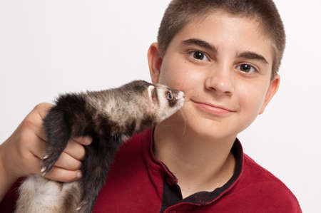sable: Boy with pet sable ferret Stock Photo