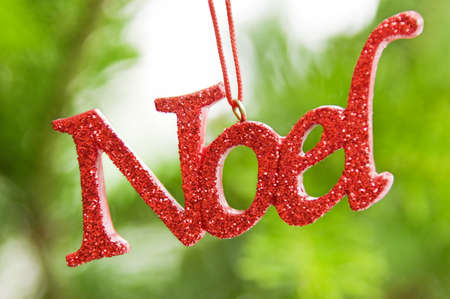 Noel ornament in front of Christmas tree