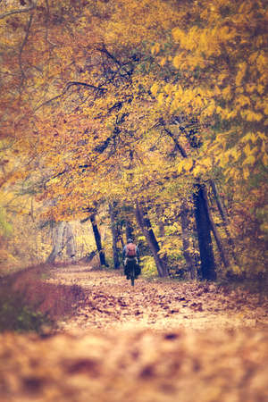 Man riding a bicycle on a park trail during the fall with leaves changing photo