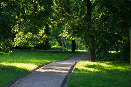 Summer landscape in park Kolomenskoe, Moscow city