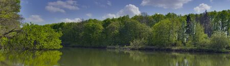 Panoramic spring lanscape with broken tree on a lake near Dikanka village, Ukraine