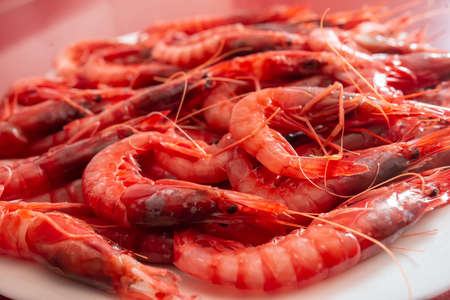 This a tray of Prawn dish facing right. Species called Red Gamba from Garrucha, Almeria, Andalucia, Spain