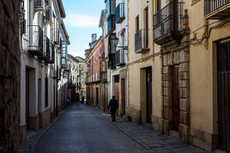 Old Renaissance-style street in the city of Ubeda (Spain)