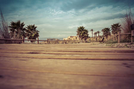 wooden path by the seaside and palm trees to take sunbathing and walk Фото со стока