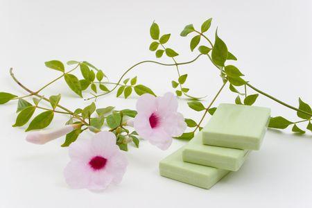 Green Herbal Bar Soap