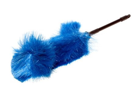 Blue Brush bristles against blowing wind