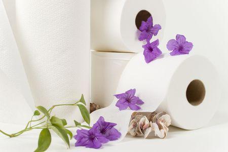 Papiertuch- und Toilettenpapierrollen mit natürlichen Blumen und sehen Oberteile Standard-Bild