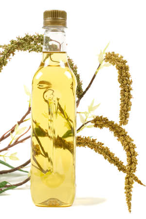Bottle of olive oil with plant as background