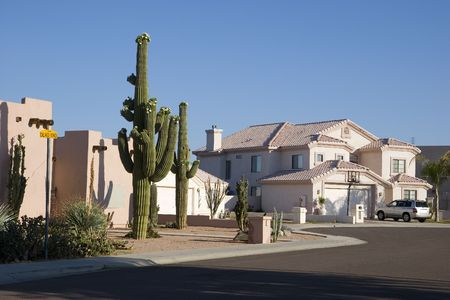 Phoenix Arizona Cul-de-sac with Saguaro Cacti in Front Adobe House