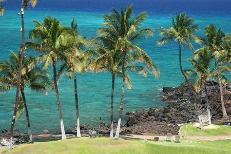 Azure Hawaiian Snorkeling Beach on Kona Island photo