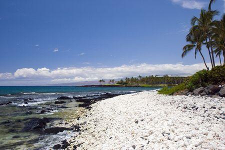 Azure Hawaiian Volcanic Beach on Kona Island photo