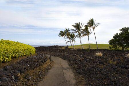 kona: Volcanic Lava Coast of Kona Island, Hawaii
