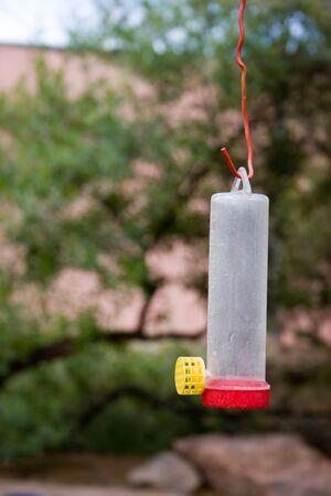 Food  Dispenser for Birds Imagens