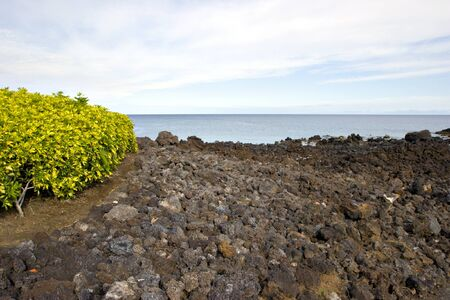 Kona Island Volcanic Lava Shore, Hawaii photo