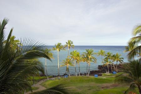 Beach on Azure Hawaiian Volcanic Shore of Kona Island photo