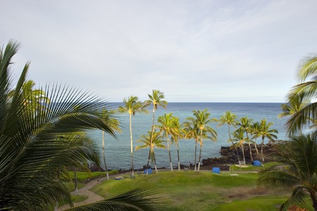 kona: Beach on Azure Hawaiian Volcanic Shore of Kona Island