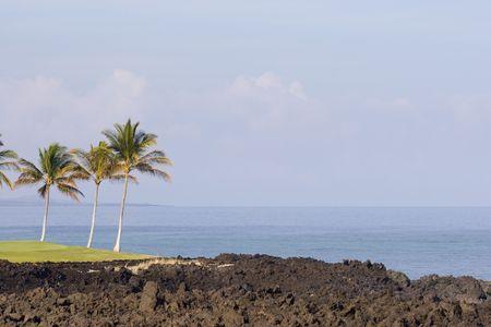 kona: Hawaiian Dreamy Volcanic Coast of Kona Island