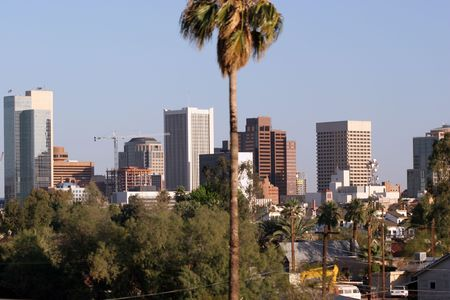 Palm above Skyscrapers in Phoenix, AZ - to create feel and look of Tropical city photo