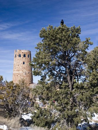 az: Raven and Watch Tower in Winter, East South Rim, Grand Canyon, Arizona Stock Photo