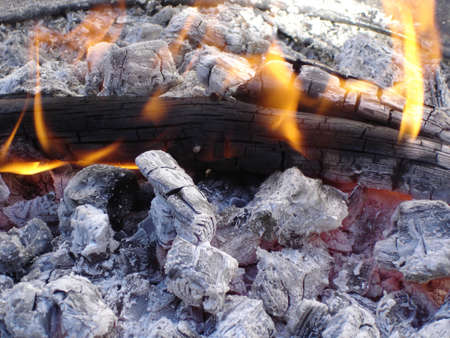 Hot Flames and White Ashes of Black Burned Wooden Logs