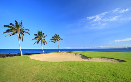 Green Hawaiian Golf Course on Lava Ocean Shore of Kona Island Imagens