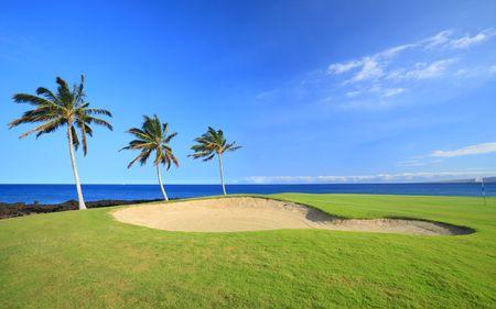 of course: Green Hawaiian Golf Course on Lava Ocean Shore of Kona Island Stock Photo