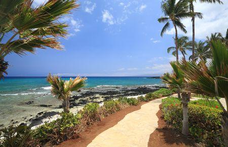 kona: Coastal Resort on Hawaii Kona Island on Still Volcanic Lava Flow