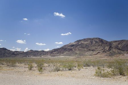 Desert Landscape in Arid Mountain Terrain with Creosote and Saguaros Stock Photo - 3277736