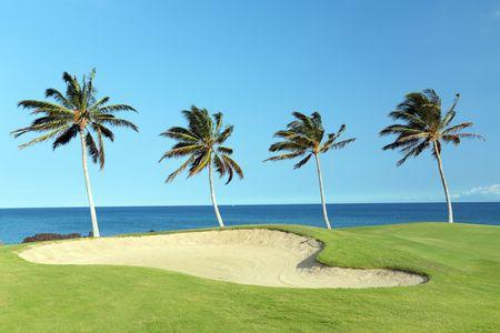kona: Golf Course on Green Ocean Shore of Kona Island, Hawaii Stock Photo