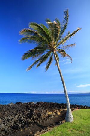 Coast of Hawaii Kona Island Stock Photo
