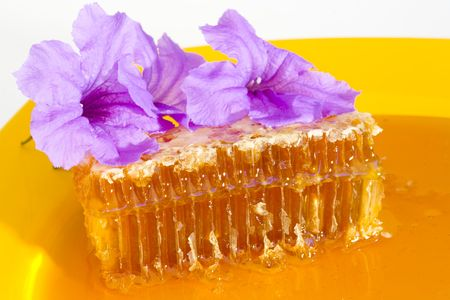 Natural Honey and Honeycomb with Violet Bell Flowers; Close-up Imagens