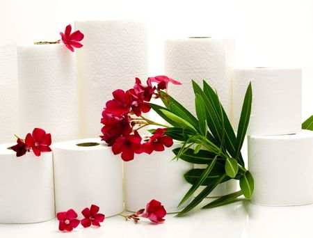toilet: Scented Paper Towels And Toiled Paper With Red Flowers