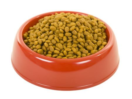 Catdog dry food in red bowl; isolated, clipping path included photo