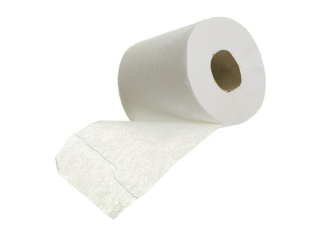 Toilet paper close up; isolated on white background photo