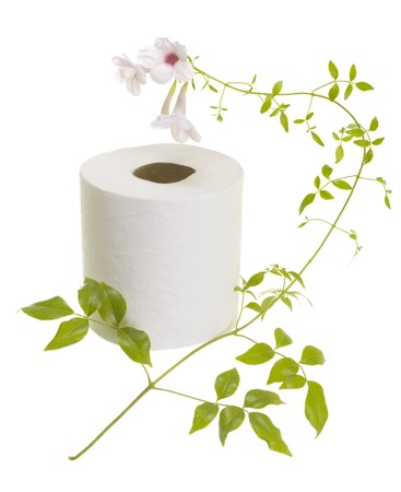 Toilet paper with fresh flower; isolated on white background Stock Photo - 7675209