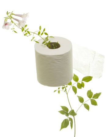 Toilet paper with fresh flower grown through; isolated on white background Stock Photo - 7754459