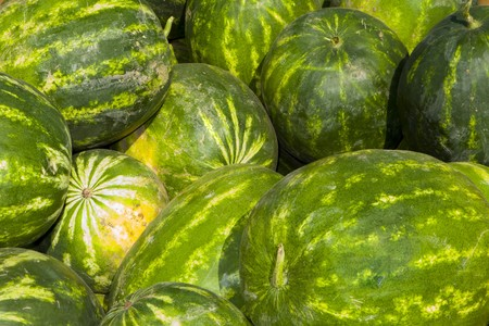 Watermelons at autumn farmers market Stock Photo