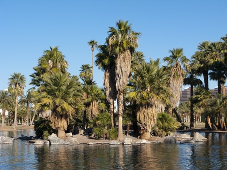 View of Enchanted Island and City of Phoenix Downtown buildings from a loch of Encanto Park, AZ photo