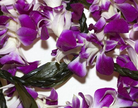 Hawaiian Welcome Lei from purple Lavender