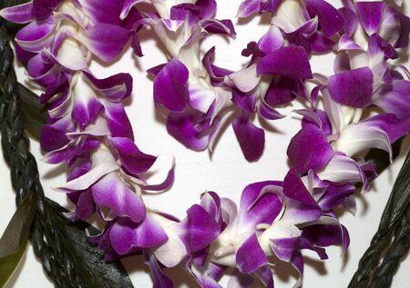 ラベンダー色の花とハワイアン レイのセグメント