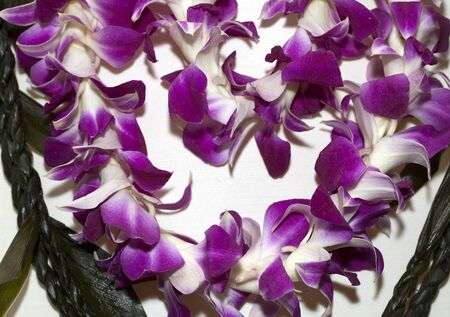 Segment of Hawaiian Lei with Lavender flowers Imagens - 13637606