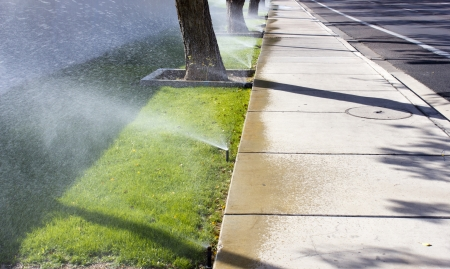 Sprinkling the lawn near pavement and road on sunny day; Scottsdale, AZ